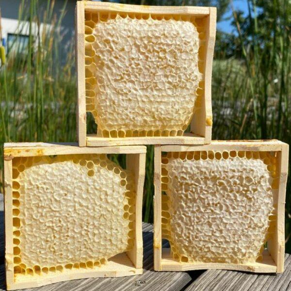 Drei Waben mit Honig im Holzrahmen